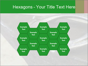0000076748 PowerPoint Templates - Slide 44