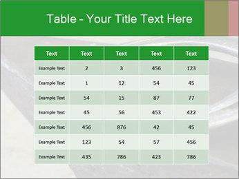 0000076748 PowerPoint Templates - Slide 55