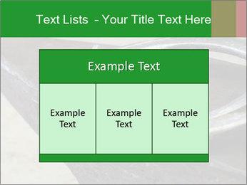0000076748 PowerPoint Templates - Slide 59