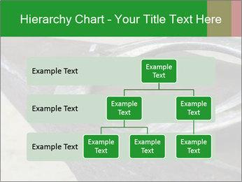 0000076748 PowerPoint Templates - Slide 67