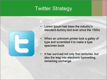 0000076748 PowerPoint Templates - Slide 9