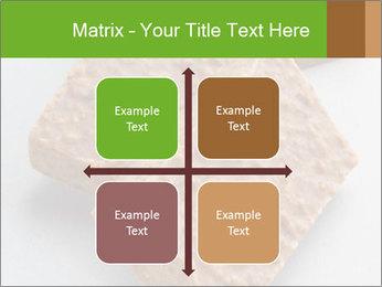 0000076751 PowerPoint Template - Slide 37