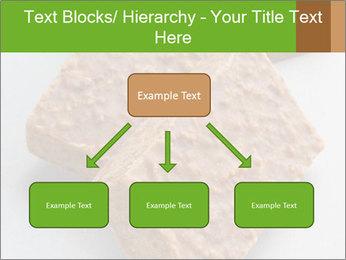 0000076751 PowerPoint Template - Slide 69