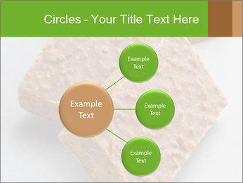 0000076751 PowerPoint Template - Slide 79