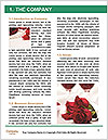 0000076758 Word Template - Page 3