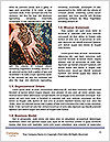 0000076767 Word Template - Page 4