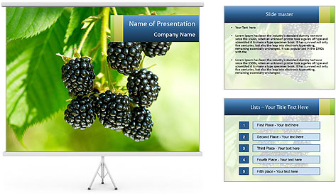 0000076769 PowerPoint Template