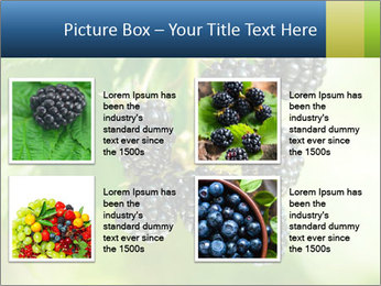 0000076769 PowerPoint Template - Slide 14