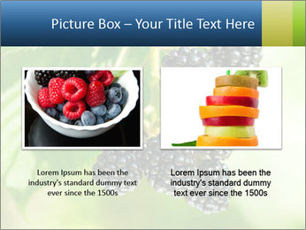 0000076769 PowerPoint Template - Slide 18