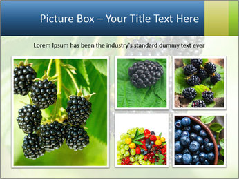 0000076769 PowerPoint Template - Slide 19