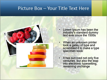0000076769 PowerPoint Template - Slide 20