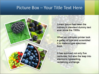 0000076769 PowerPoint Template - Slide 23