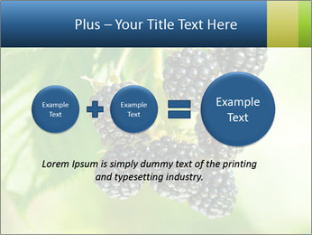 0000076769 PowerPoint Template - Slide 75