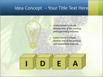 0000076769 PowerPoint Template - Slide 80