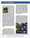 0000076769 Word Templates - Page 3