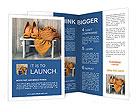 0000076772 Brochure Template