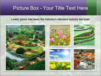 0000076773 PowerPoint Template - Slide 19