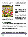 0000076773 Word Templates - Page 4