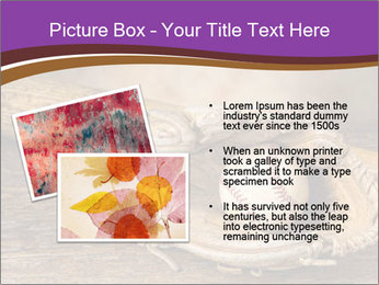 0000076774 PowerPoint Templates - Slide 20