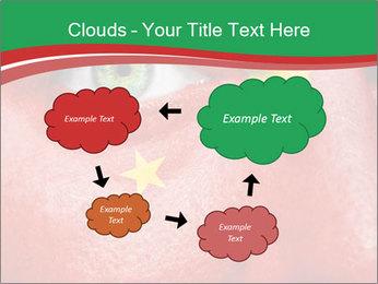 0000076778 PowerPoint Template - Slide 72