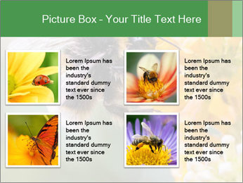 0000076783 PowerPoint Template - Slide 14