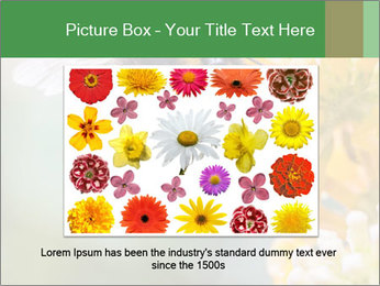 0000076783 PowerPoint Template - Slide 16