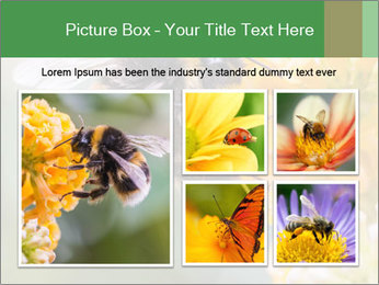 0000076783 PowerPoint Template - Slide 19