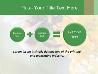 0000076783 PowerPoint Template - Slide 75