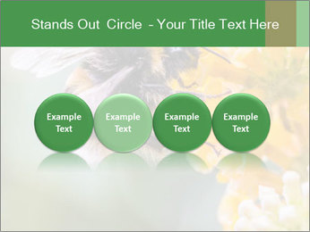 0000076783 PowerPoint Template - Slide 76