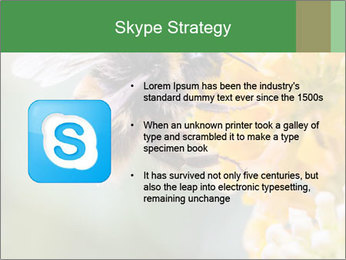 0000076783 PowerPoint Template - Slide 8