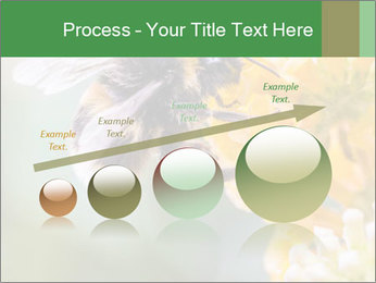 0000076783 PowerPoint Template - Slide 87