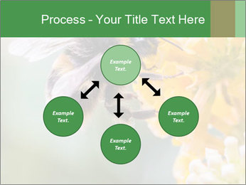 0000076783 PowerPoint Template - Slide 91