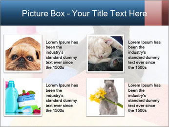 0000076791 PowerPoint Template - Slide 14