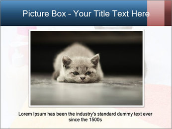 0000076791 PowerPoint Template - Slide 15