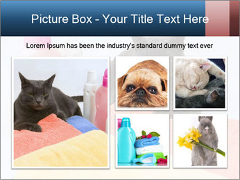 0000076791 PowerPoint Template - Slide 19
