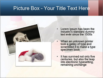 0000076791 PowerPoint Template - Slide 20