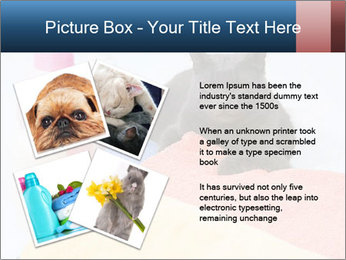0000076791 PowerPoint Template - Slide 23