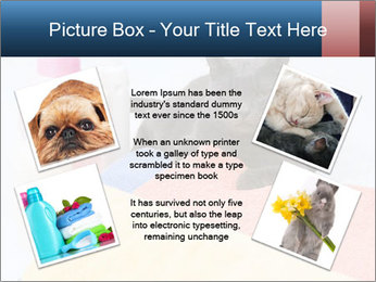 0000076791 PowerPoint Template - Slide 24