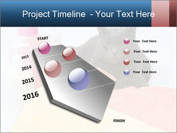0000076791 PowerPoint Template - Slide 26