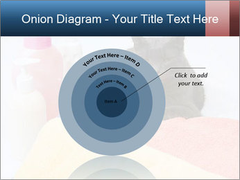 0000076791 PowerPoint Template - Slide 61