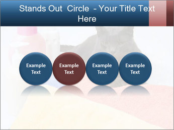 0000076791 PowerPoint Template - Slide 76