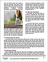 0000076813 Word Template - Page 4