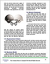 0000076822 Word Template - Page 4