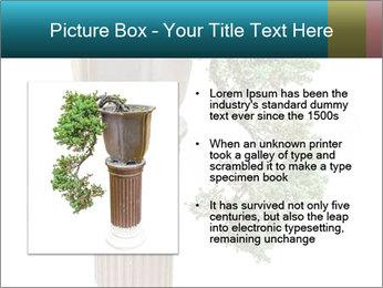 0000076823 PowerPoint Templates - Slide 13