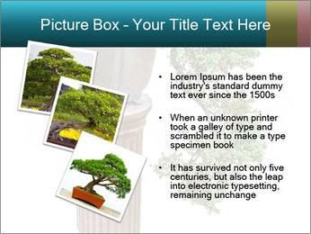 0000076823 PowerPoint Template - Slide 17