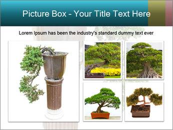 0000076823 PowerPoint Templates - Slide 19