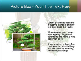 0000076823 PowerPoint Templates - Slide 20