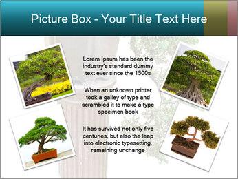 0000076823 PowerPoint Templates - Slide 24