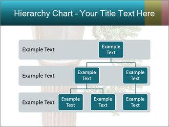0000076823 PowerPoint Template - Slide 67