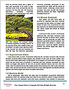 0000076823 Word Template - Page 4